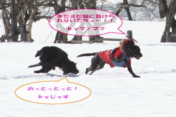 2011_02_26_0420.jpg
