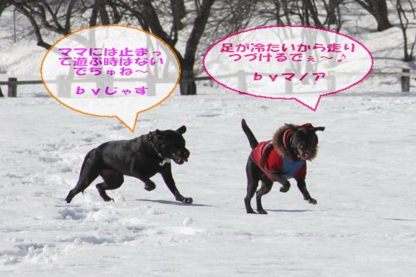 2011_02_26_0425.jpg