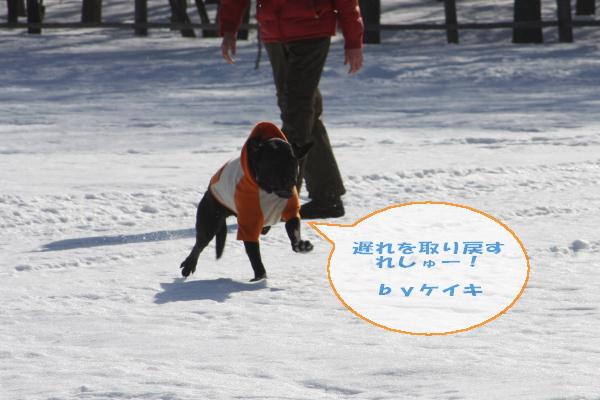 2011_02_26_0432.jpg