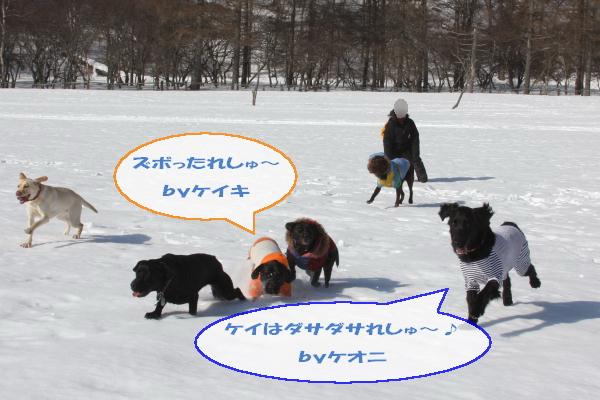 2011_02_26_0443.jpg