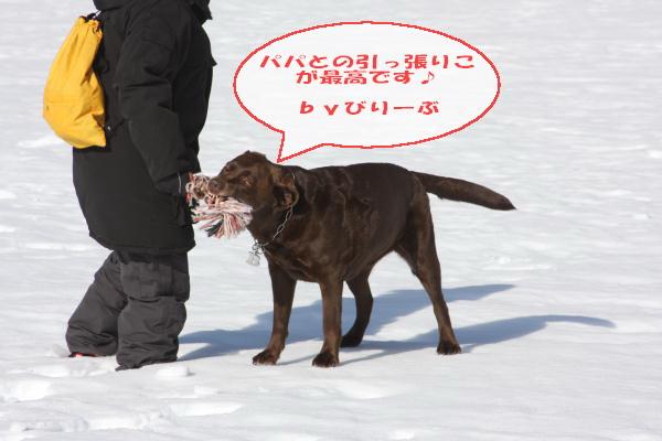 2011_02_26_0446.jpg