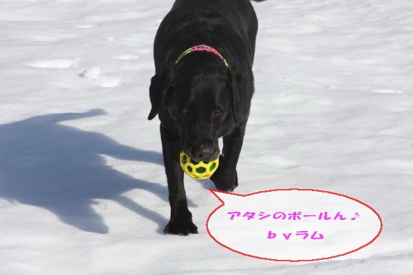 2011_02_26_0448.jpg