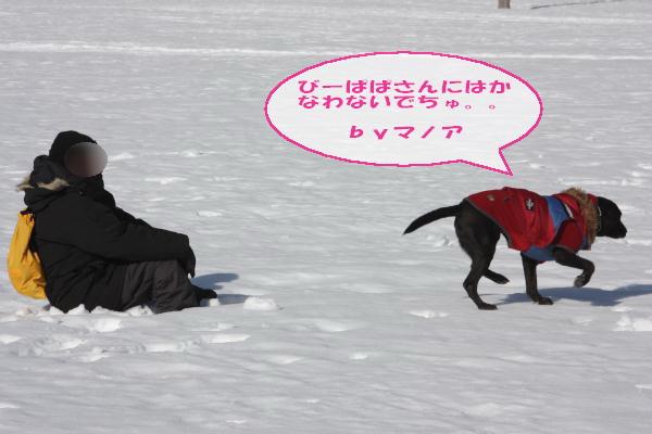 2011_02_26_0449.jpg
