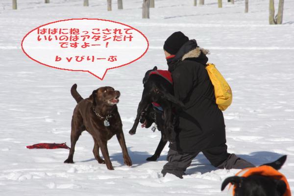 2011_02_26_0467.jpg