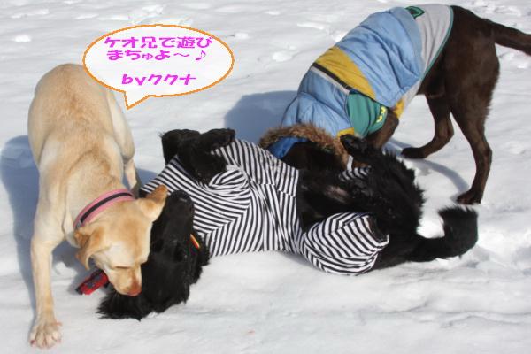 2011_02_26_0472.jpg