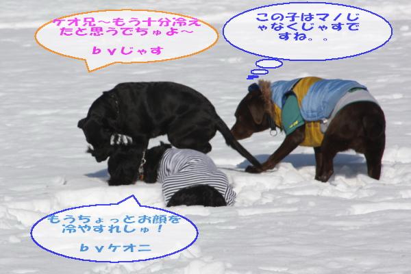 2011_02_26_0477.jpg