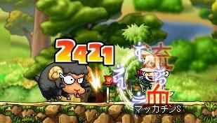 Maple7000a.jpg
