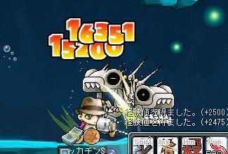 Maple7031a.jpg