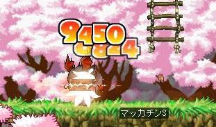 Maple7046a.jpg