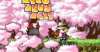 Maple7067a.jpg
