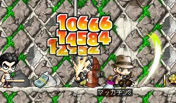Maple7084a.jpg