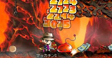 Maple7087a.jpg