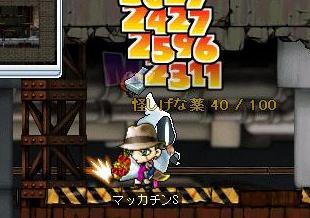 Maple7092a.jpg