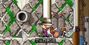 Maple7095a.jpg