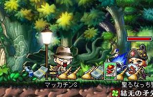 Maple7208a.jpg