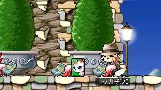 Maple7216a.jpg