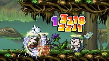 Maple7245a.jpg