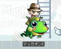Maple7276a.jpg