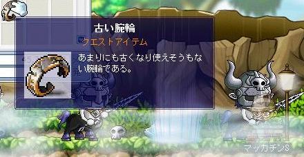 Maple7367a.jpg