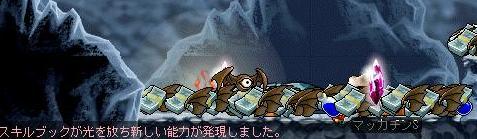 Maple7369a.jpg