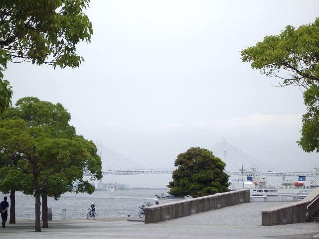 IMGP3867-640.jpg