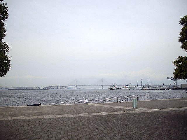 IMGP3868-640.jpg