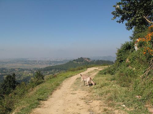 hiking15.jpg