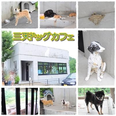 15_20100627225723.jpg