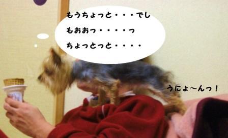 H21.1.22イロイロ 008