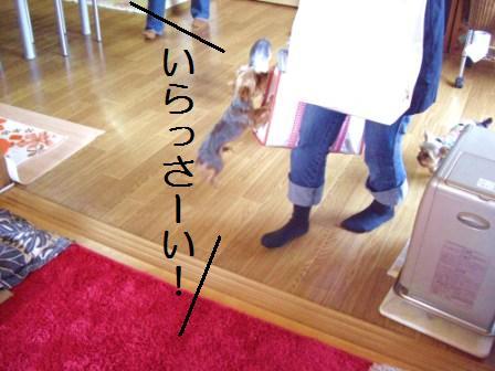 H21.3.29パンの日イロイロ 008