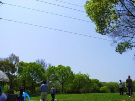 H21.4.19近畿ヨーキーオフ会IN大仙公園 031