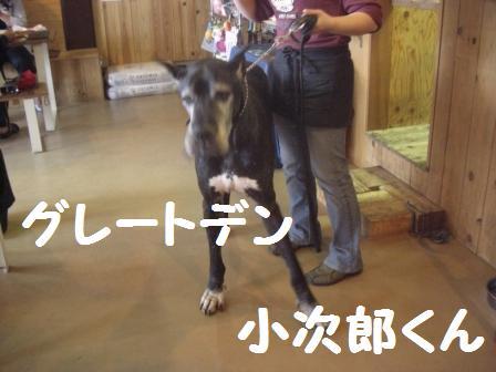 H21.5.17神戸でカフェ 122