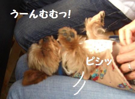 H21.6.28お天気 001