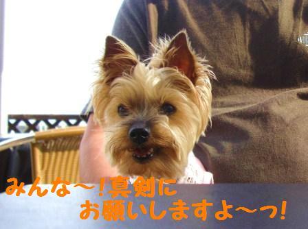 H21.6.28お天気 009