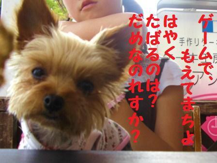 H21.6.28お天気 010