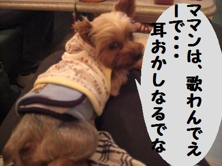 H21.6.28お天気 053