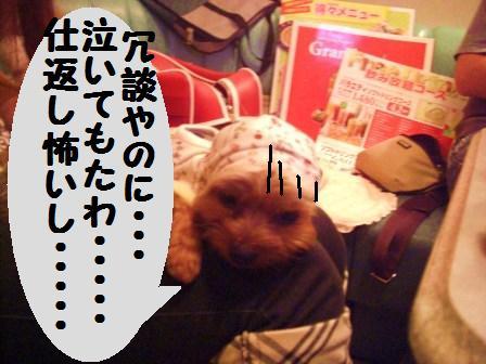 H21.6.28お天気 052
