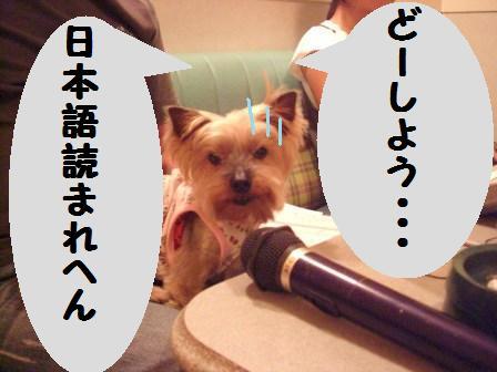 H21.6.28お天気 058