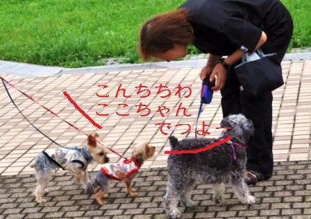 H21.7.25芦屋花火inヨットハーバー 065