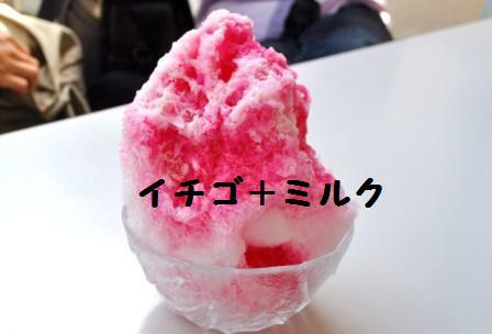 H21.9.13ぐるり大阪 043