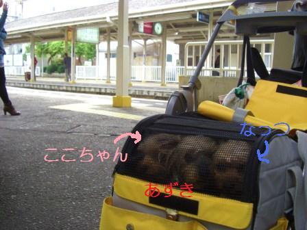 H21.10.25電車でお出かけ 002