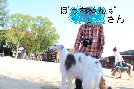 H21.11.8宝塚 123