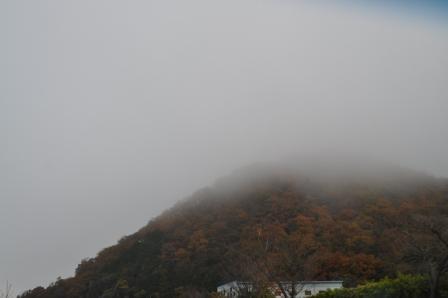 H21.11.28梅田29香住 017