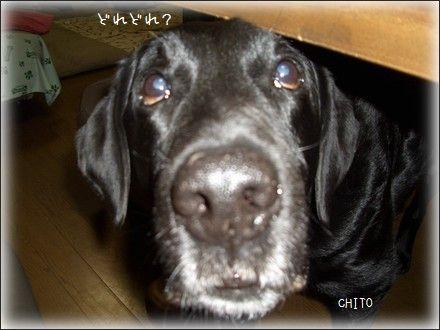 CIMG2010332.jpg