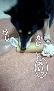 111229_omocha2.jpg
