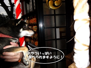 120101_hatsu2.jpg