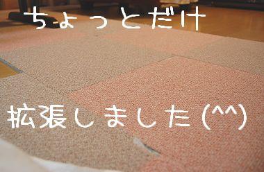 newcarpet_2.jpg