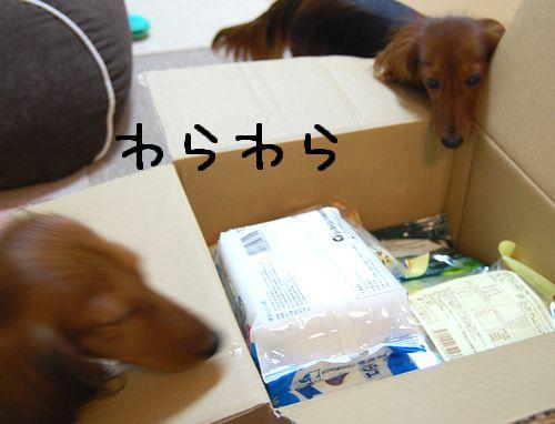 nimotsu3.jpg