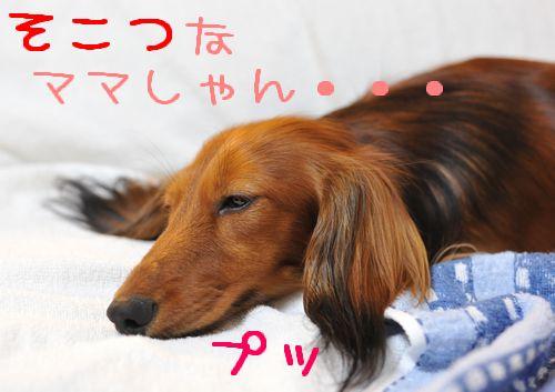 pinchi_4.jpg