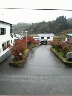 秋いきなり冬(?)